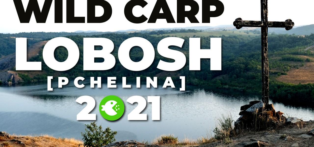 Шаранджийско състезание LOBOSH WILD CARP 2021